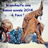 Bonne année à tous ! ;-)