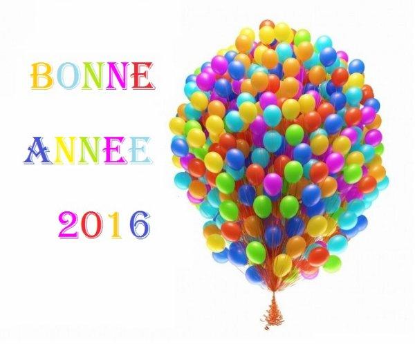 Bonne et heureuse  année a tous mes amis !!