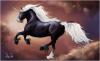 les-chevaux-a-lenalee