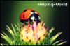 Helping-World