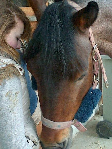 Gros poney d'amour.