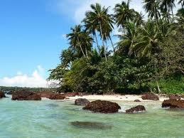 Unbeatable Tourist Attractions and Destinations of Kerala