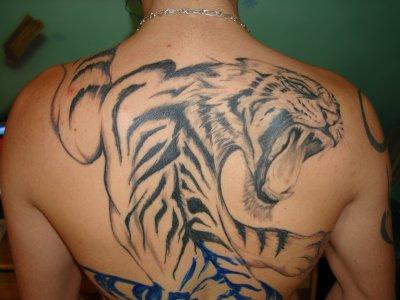 tatouage tigre 4/13 - blog de tattoogilles