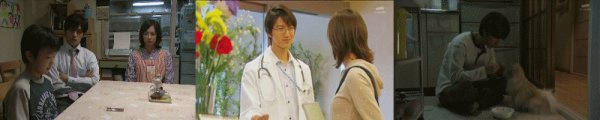 Drama : Japonais Inu wo Kau to Iu Koto 9 épisodes[Vie Sociale et Drame]