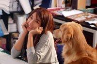 Film : Coréen  The relation of face, Mind and Love 107 minutes [Comédie et Romance]