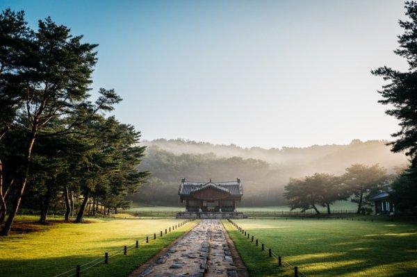 Matin paisible dans la ville de #Goyang sur le site des tombes royales Seo-oreung et Gyeongneung