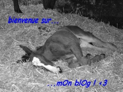 salut à tOOus ! ;D