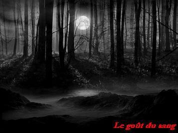 Fiction loup-garou : Le goût du sang (1)