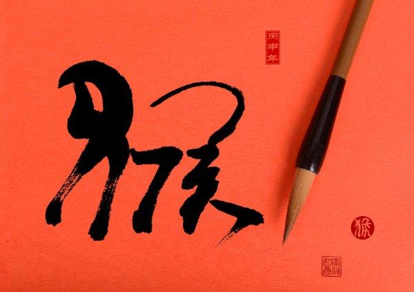 Article spécial pour le nouvel an Chinois : Année du 猴  (Singe)