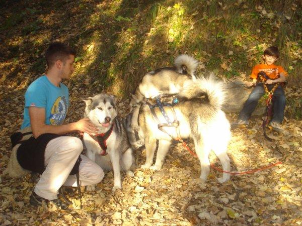 Rencontre avec Kaya de magellan en Isère (soeur de Fire)