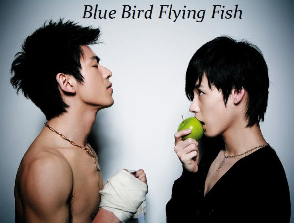 Blue Bird Flying Fish