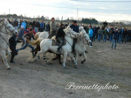 Manduel le 26 fervrier 2012
