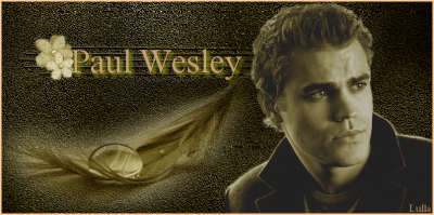 filmographie de paul wesley