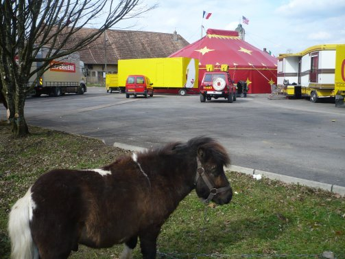 Reportage Eden circus 2008
