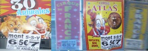 Reportage Ménagerie + installations du cirque Atlas