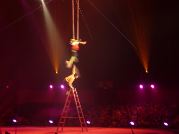 Reportage 30eme festival international du cirque de demain ! (au cirque Phenix) 2009 (partie 3)