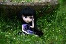Photo de pullipmimi45