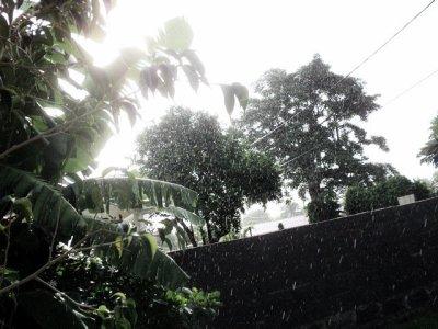 Même quand il pleut, la nature est belle