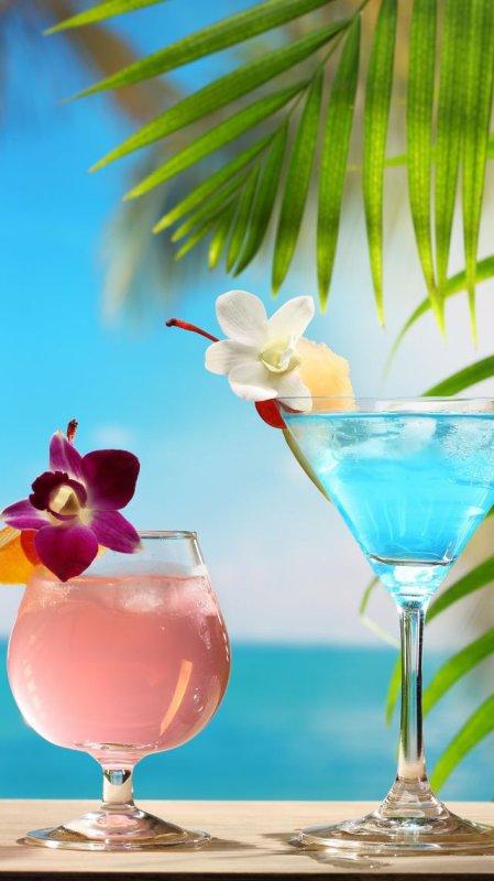 par une belle journée rien de tel qu' un bon cocktail ......santé