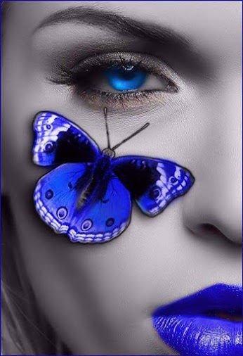 tel un papillon bleu