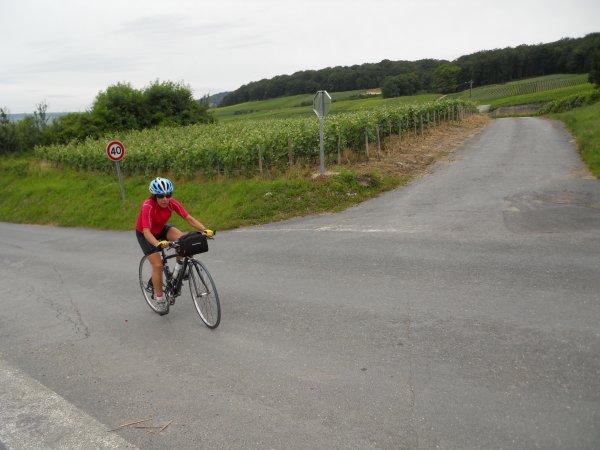 Brevet Cyclo de la Montagne de Reims (juin 2012)
