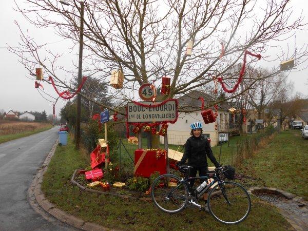 Tréfle Versaillais (janvier 2013)