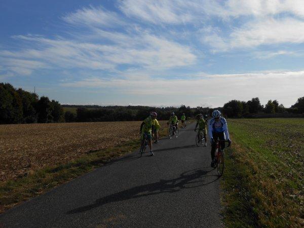 Rallye des Orchidées à Boissy-St-Léger (8 septembre 2013), par JPB