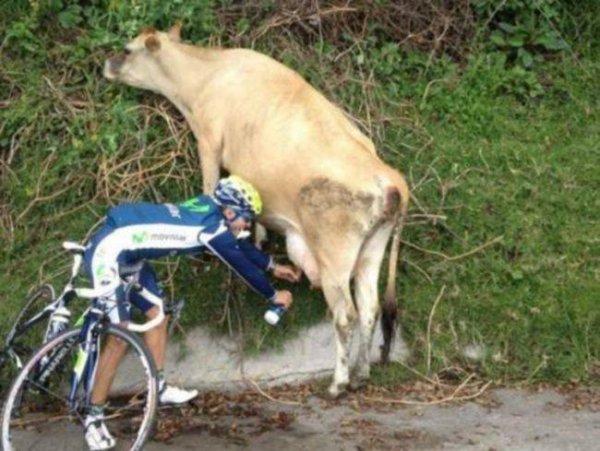 Voila pourquoi ça pedal fort à la movistar