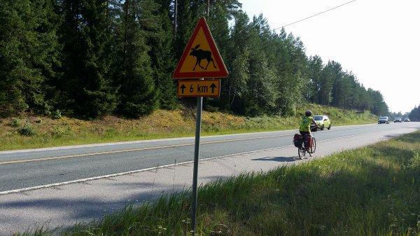 En vélo en Finlande