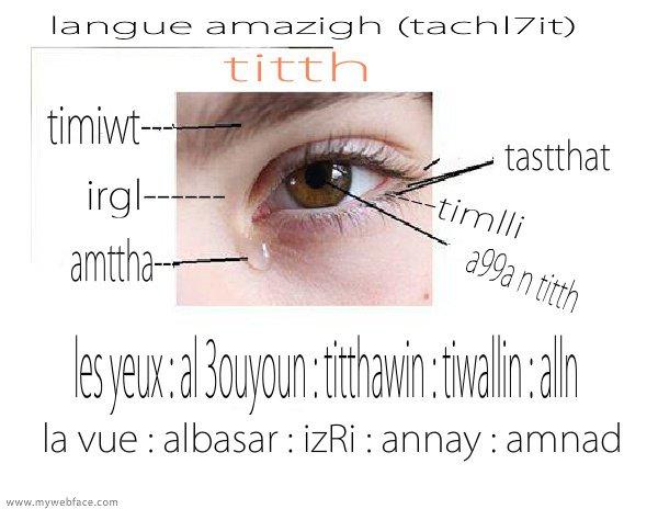 oeil : titth