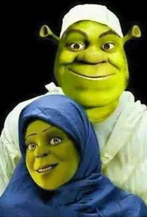 L'islam et Disney ont une chose en commun deviné ??