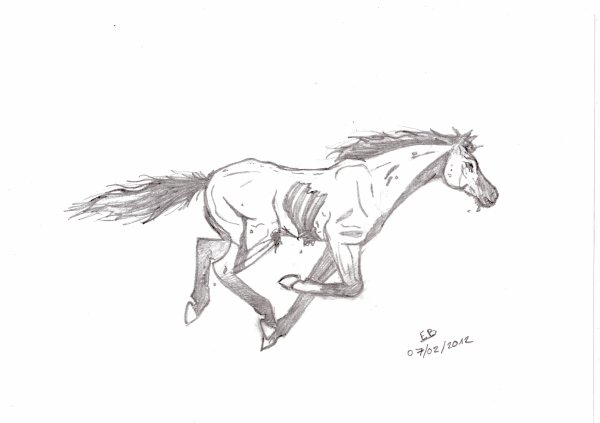 Chevaux zombies isia uri blog de dessin - Dessiner un cheval simple ...