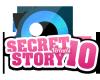 secretstory-virtuels