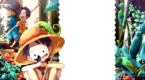Habillage One Piece [libre-service]