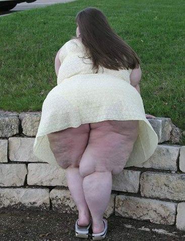 il y a de quoi admirer  ,elle amortissant bien les fauteuilles , très jolie à voir !