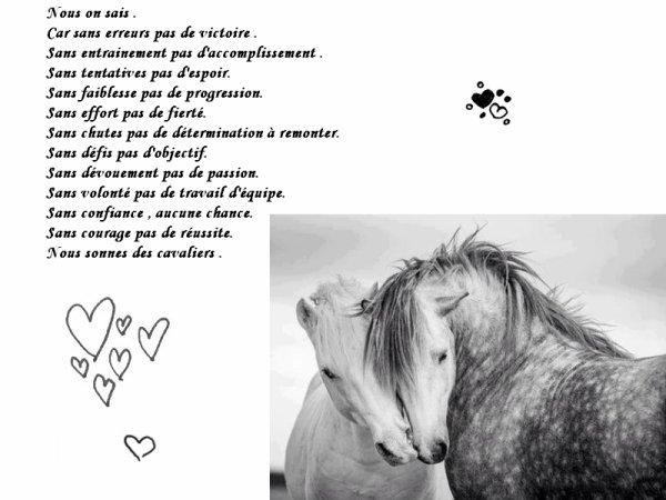 Ω L'équitation ღ