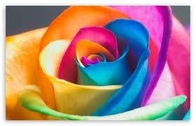 ♥♥mais cela etè qu'un rève  sur les millles et une couleur ♥♥♥
