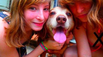 Mon chien,UnAanimal de compagnie exemplaire.♥