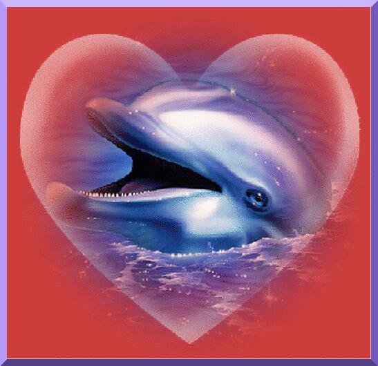 J'ai envie de changer un de style aujourd'hui juste pour ma princesse qui adore les dauphins donc juste pour toi ma princesse mais aussi pour celles et ceux qui aime les dauphins