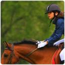 Photo de monde-cheval