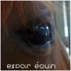 Espoir-Equin