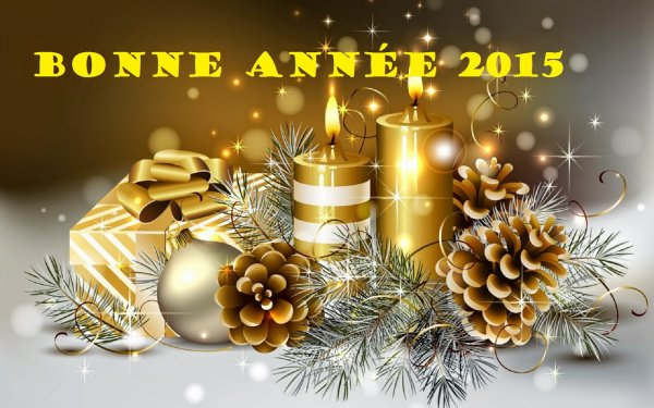 [ !!! Bonne Année 2015 !!! ]
