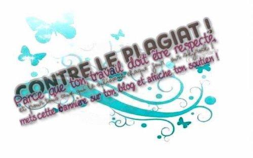 Contre le plagiat!!!!!!!!
