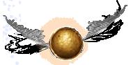 Chapitre 19: Cédric Diggory