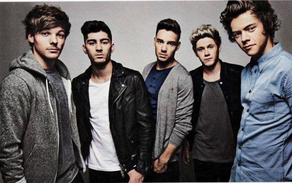 One Direction, leur parcourt pour en arriver là.