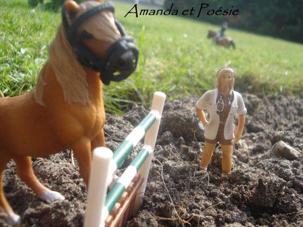 Amanda et Poésie