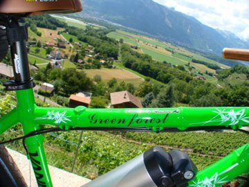 "Vélo bamboo électrique de 26"""