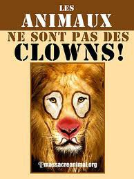 les animaux ne sont pas des clowns !