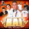 Best Of Rai 2011 (Dj Dahou)
