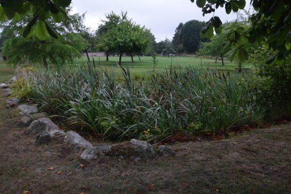 la vaupaliere le 24 juillet sous la pluie